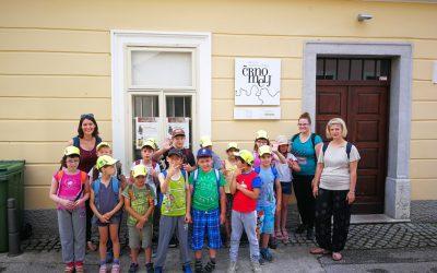 Raziskovanje mesta Črnomelj