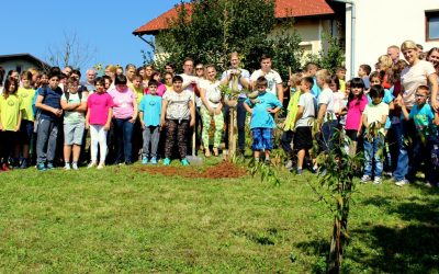 Jablana ob svetovnem dnevu miru