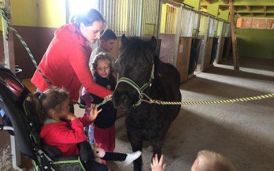 Podjetje A-SPRINT d.o.o omogočilo projekt Druženje s konji